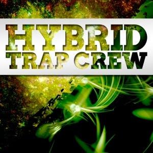 Hybrid Trap CREW