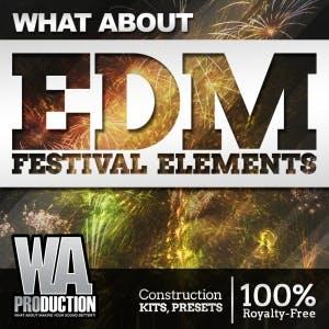 EDM Festival Elements