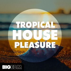 Tropical House Pleasure