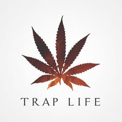 Traplife