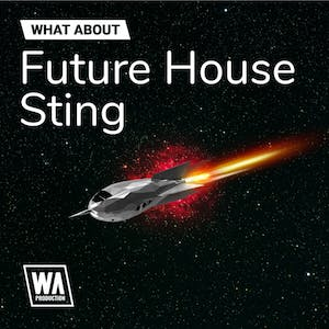 Future House Sting