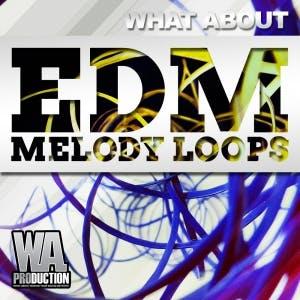 EDM Melody Loops