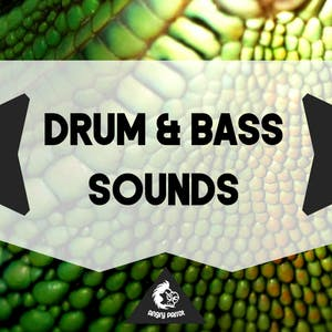 Drum & Bass Sounds