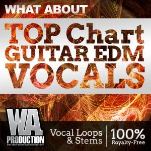 Top Chart Guitar EDM Vocals