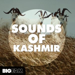 Sounds Of Kashmir