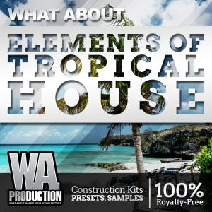 Elements Of Tropical House