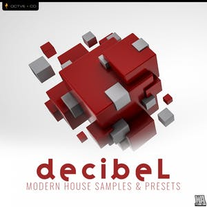 Decibel Modern House