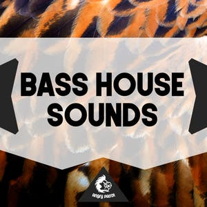Bass House Sounds