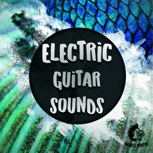 Electric Guitar Sounds