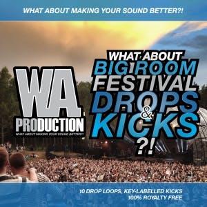 Big Room Festival Drops & Kicks