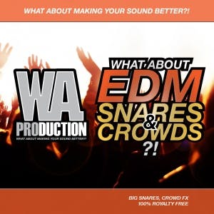 EDM Snares & Crowds