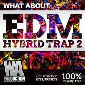 EDM Hybrid Trap 2
