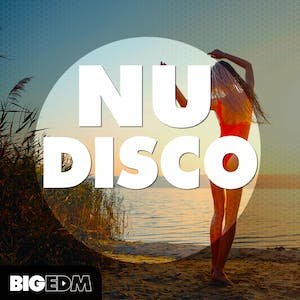 Nu Disco Sample Pack
