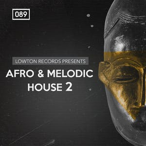 Afro & Melodic House 2