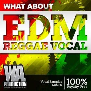 EDM Reggae Vocals