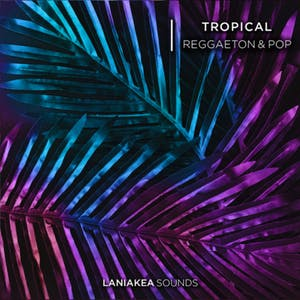 Tropical Reggaeton & Pop